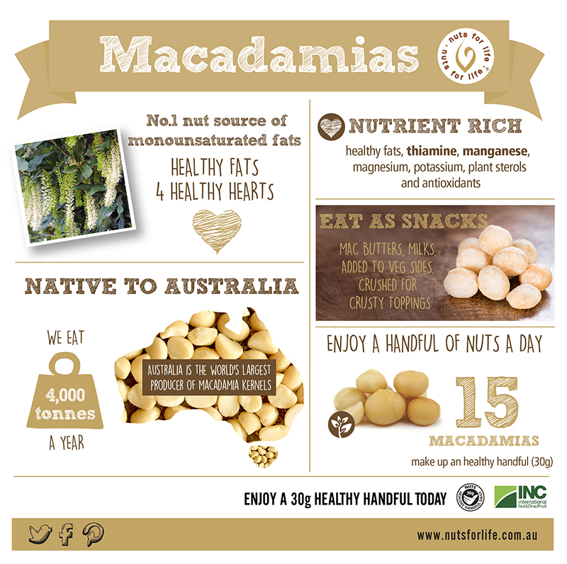 Nuts for Life - Macadamias