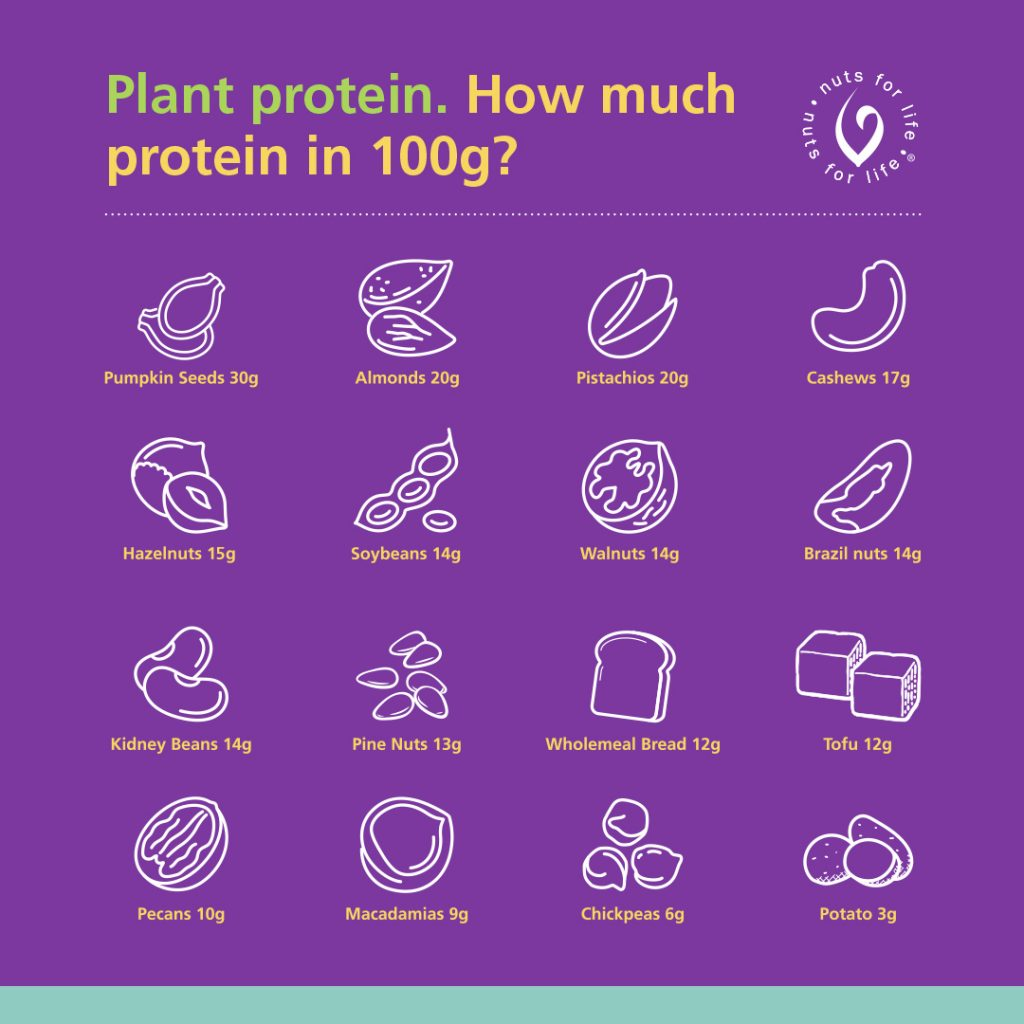 Nut for Life - Plant protein infographic - Instagram