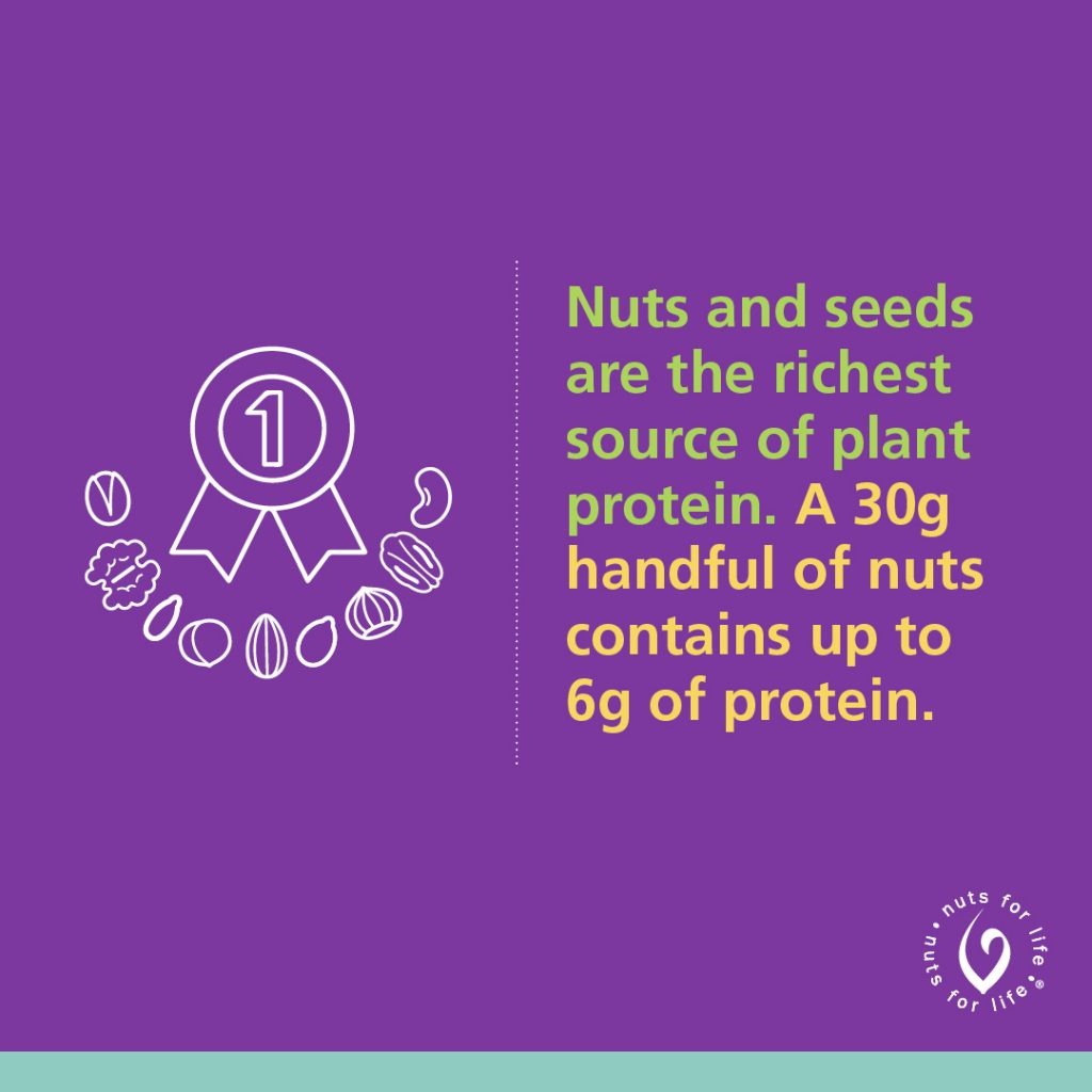 Nuts for Life - Nuts & seeds plant protein Instagram Graphic