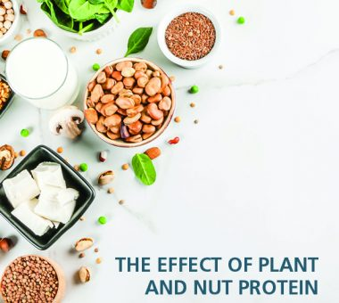 Nuts for Life - The effect of plant and nut protein on health